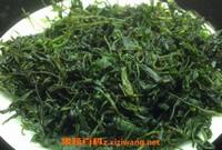 毛冬青茶的功效与作用 毛冬青茶的禁忌