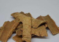 鸭脚木皮的功效与作用