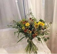 花儿和生活有什么联系,花在生活中的重要性