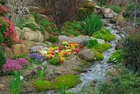 哪些植物放在卧室里有利于健康呢?不是所有植物都适合放在卧室里养殖的