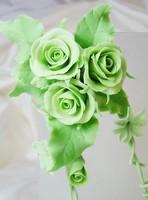 绿玫瑰的花语是什么,为您解答绿玫瑰的花语是什么吧!