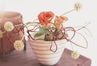 如何制作盆式插花组合的方式表现自然的形态和花的优美