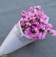 粉色勿忘我花语是什么,不同勿忘我花束搭配花语