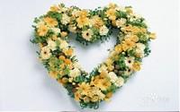 不同的花有不同的花语,不同的氛围需要选择不同的鲜花