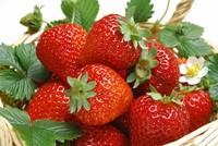 在家里怎么种植草莓?教你盆栽草莓的