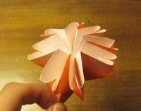 康乃馨的折叠法,手艺艺术,美好和典雅的典范