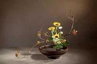 插花艺术,对花的热爱只增不减,不可或缺的仪式感